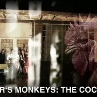 Master's Monkeys